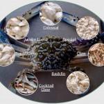 Heron Crab Meat
