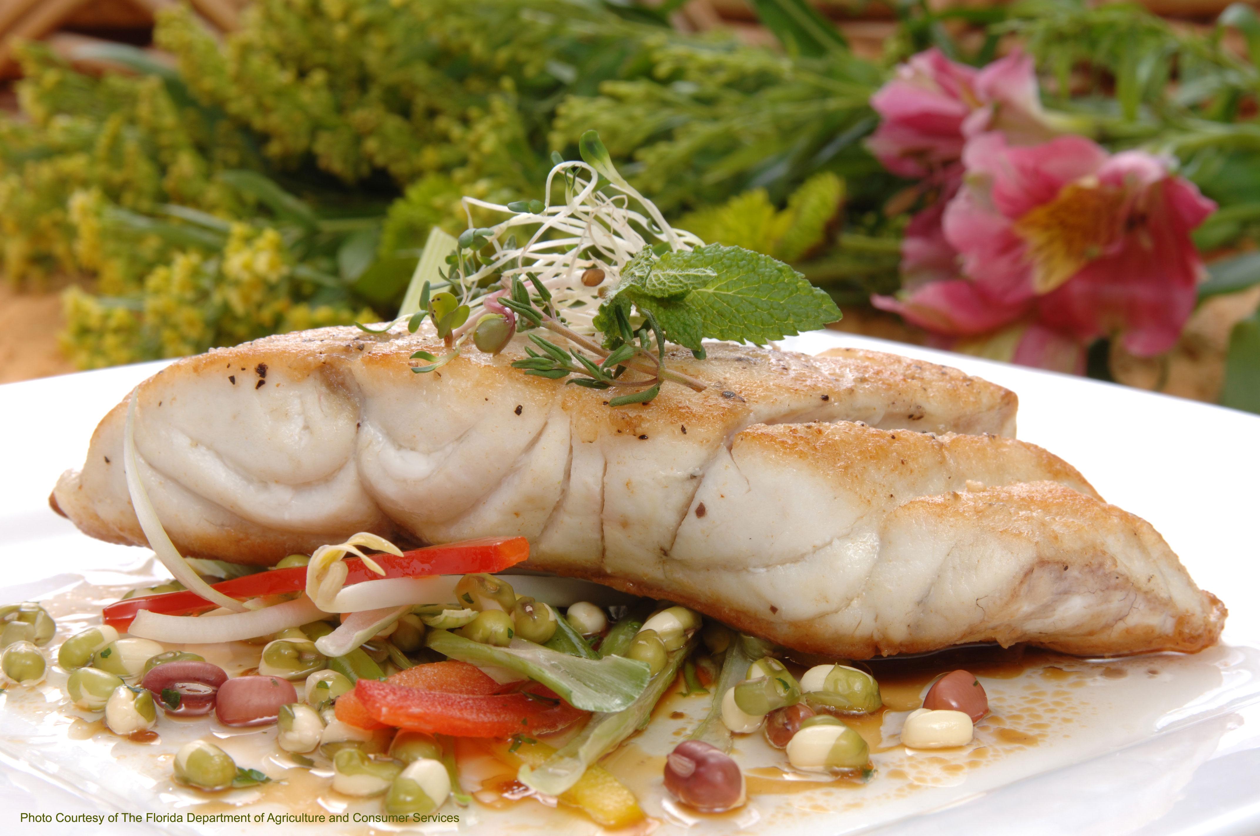 Grouper fillet fresh for Grouper fish recipes